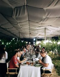 Orchard_Dining02