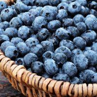Organic-Blueberries-Ganico-05