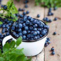 Organic-Blueberries-Ganico
